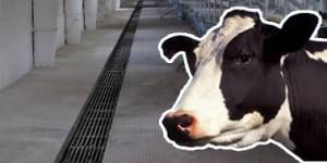Решетки чугунные для животноводческих ферм